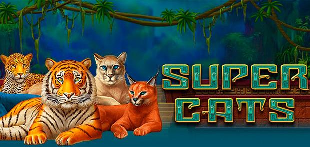 Слот Super Cats